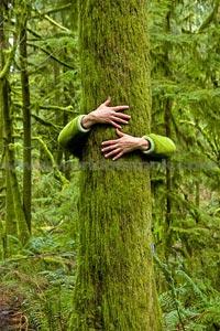 Abraçando árvore