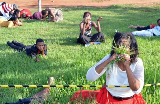 Pastor na África do Sul instruiu fiéis a comerem grama a fim de ficarem mais perto de Deus