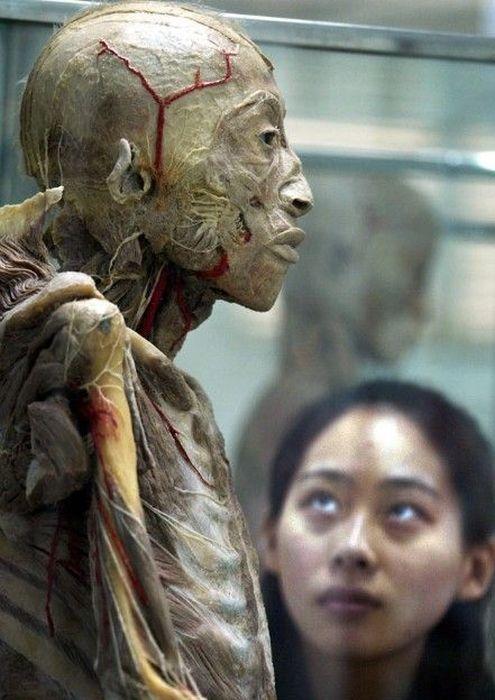 dead_bodies_01