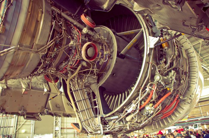 beauty_engines_12