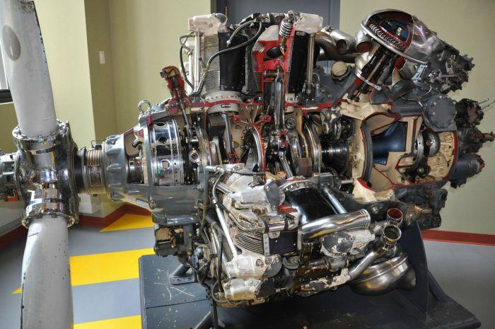 beauty_engines_15