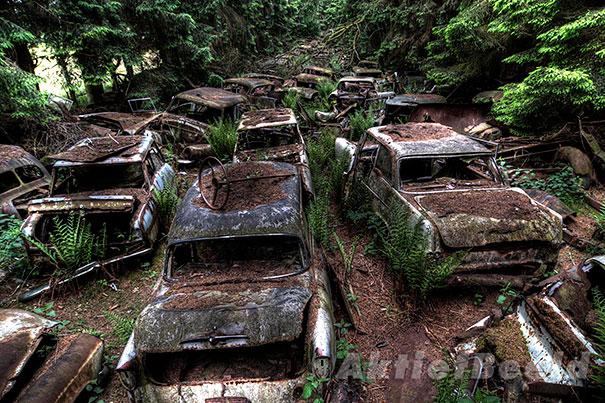 cemiterio_carro_03