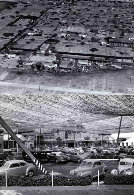 Os coordenadores do corpo de forças armadas dos EUA decidiram esconder a planta de produção dos aviões Lockheed em Burbank, protegendo-a de um possível ataque aéreo japonês. A camuflagem foi feita com uma rede, que ao olhar do alto, dava a impressão que era uma zona rural.