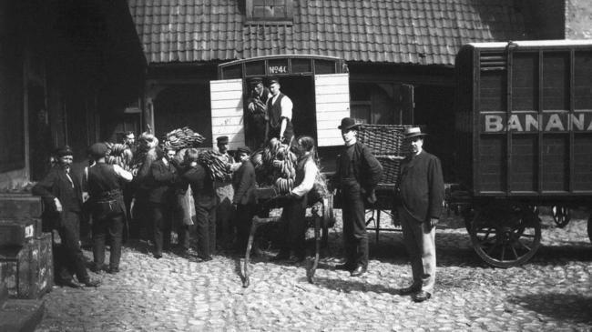 Quando as primeiras bananas chegaram na Noruega, em 1905.