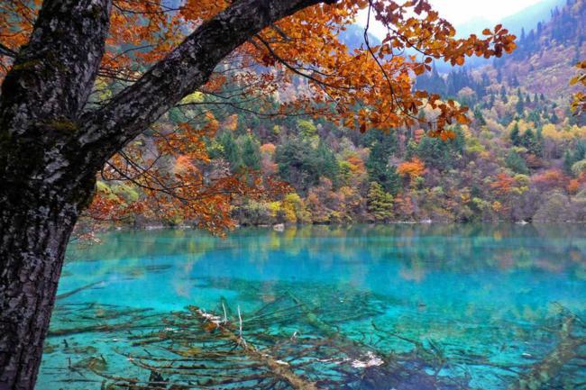 paisagens_coloridas_02