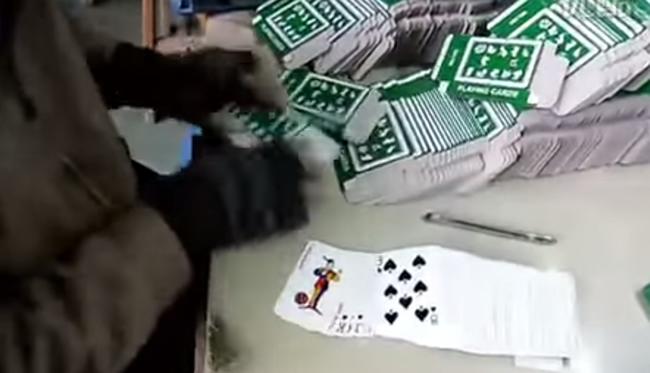 embaladores_cartas