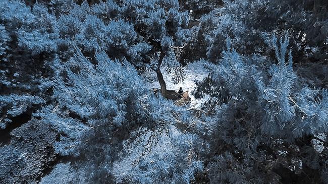 drone_21