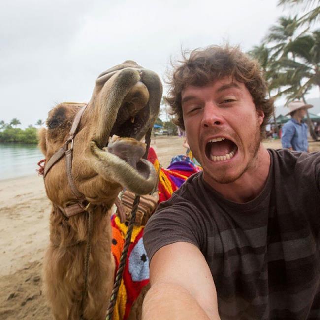 selfie_animais_03