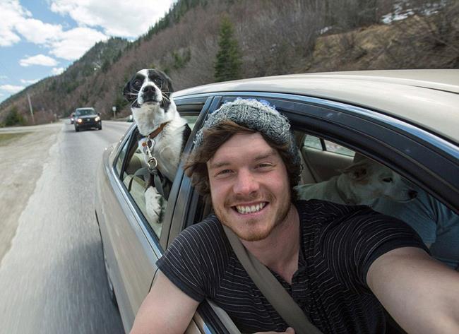 selfie_animais_07