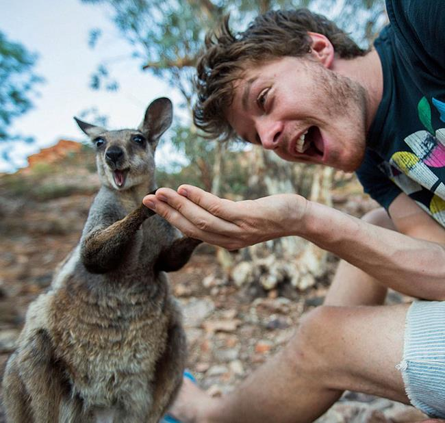 selfie_animais_11