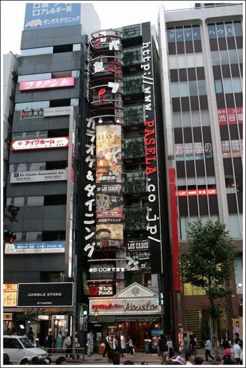 casa_japao_02