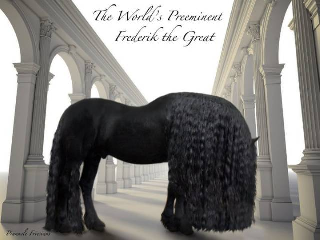 this_horse_might_have_the_worlds_most_fabulous_mane_640_10