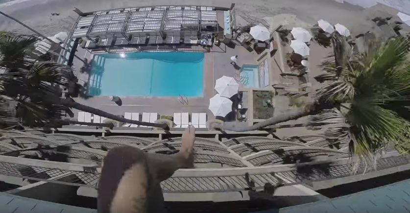 salto_piscina1