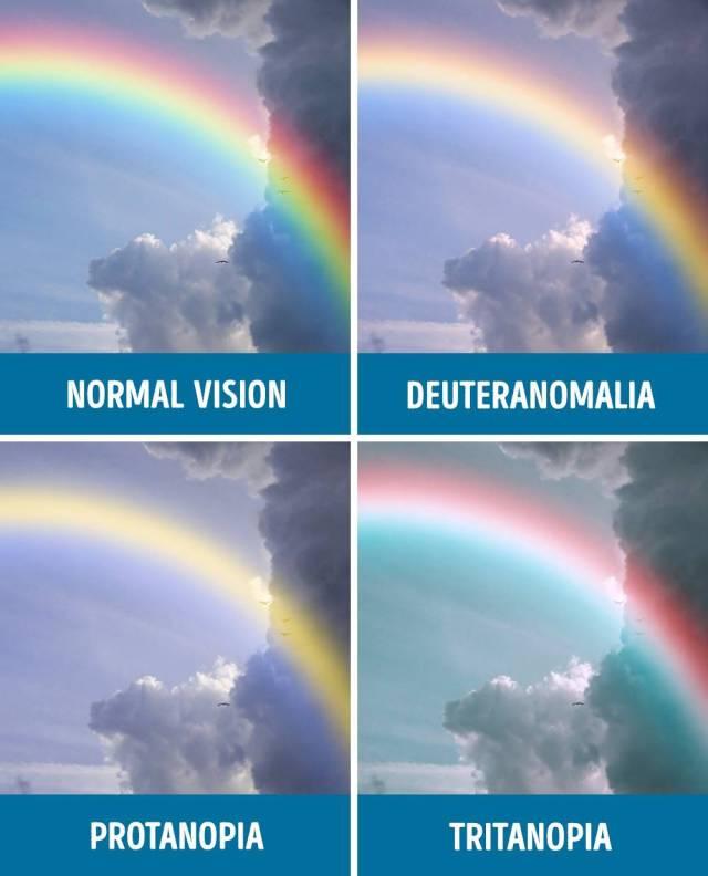 daltonismo_09