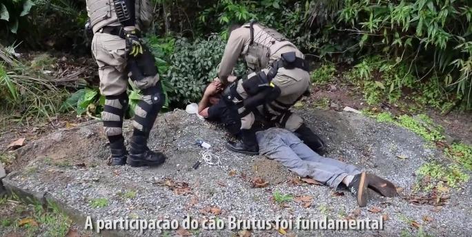 cao-policial