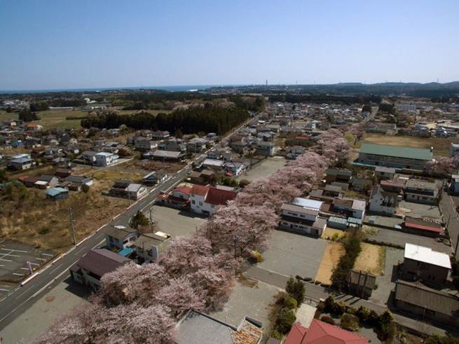 fukushima-24
