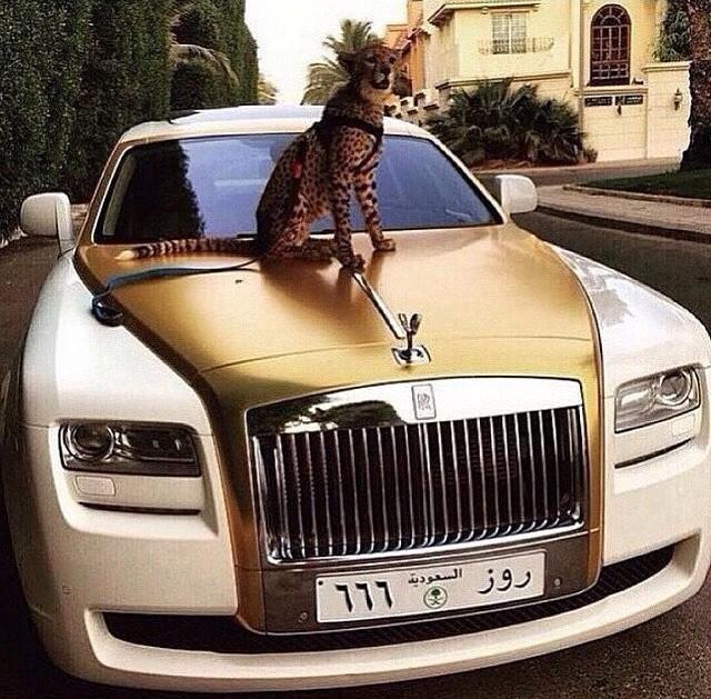 rich_arabs_06
