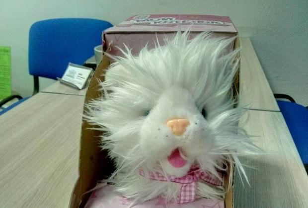 brinquedos-bizarros-12