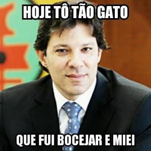 "Meme da fanpage ""Haddad Prefeito Gato"". (Foto: Reprodução Facebook)"