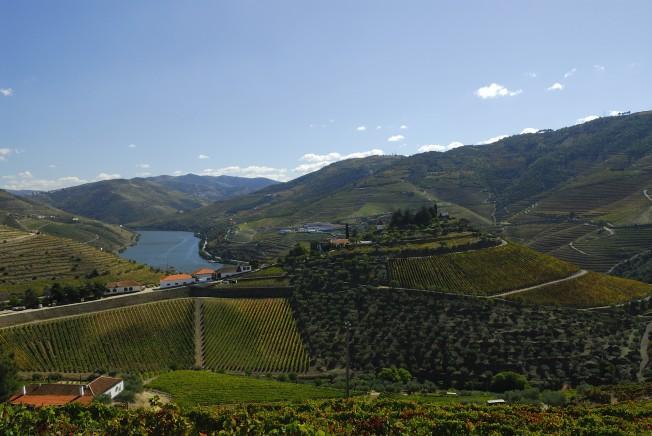 50 grandes vinhos de Portugal e algumas escolhas pessoais