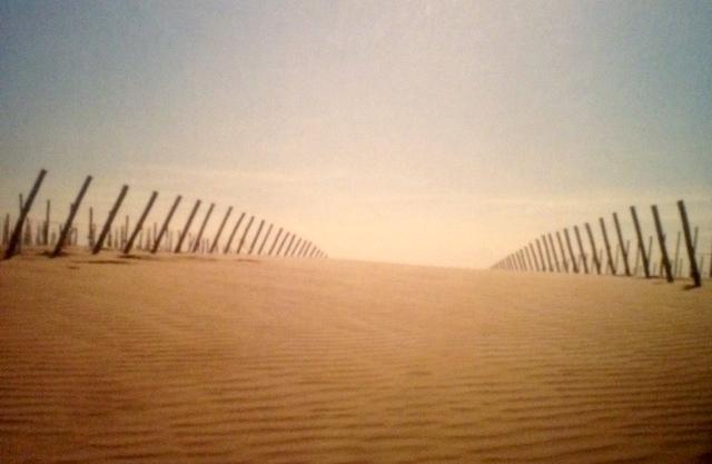 Bodega del Desierto: não é apenas uma força de expressão