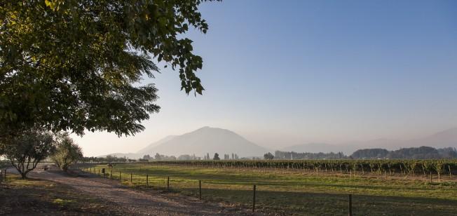 Vale de Colchagua, Chile: uma viagem pelos rótulos conhecidos