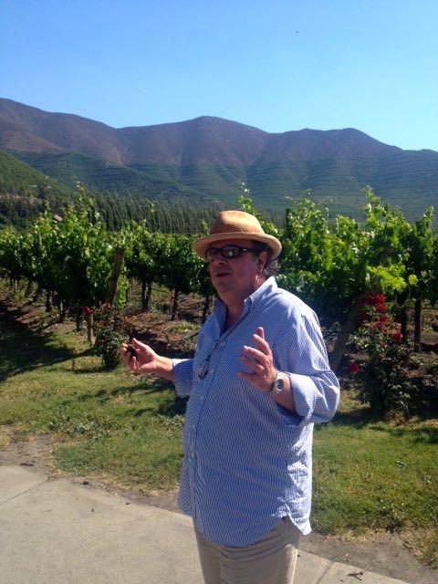 """Mauro no meio de seus vinhedos: """"O lugar tem de te eleger"""""""