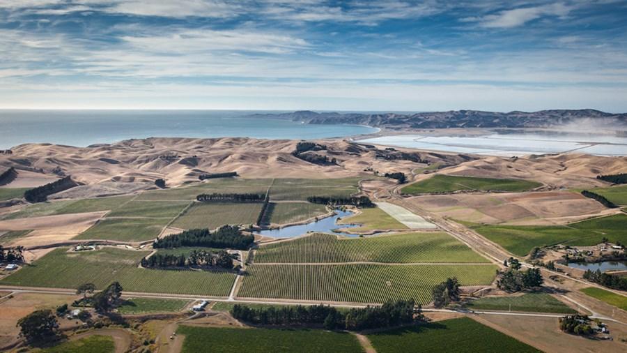 Mar, céu e terra: vinhedos de Hawsk's Bay. Efeito uau para os olhos e nos vinhos!