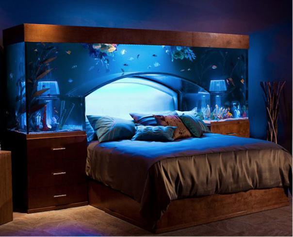 aquarios_06