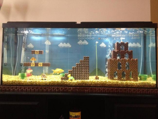 aquarios_08