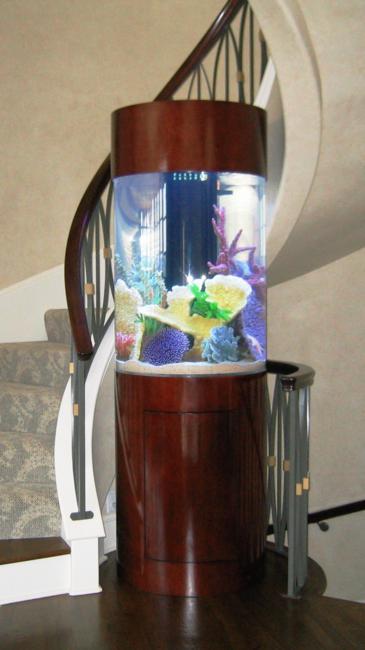 aquarios_11