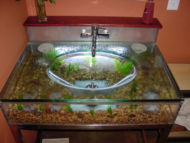 aquarios_24
