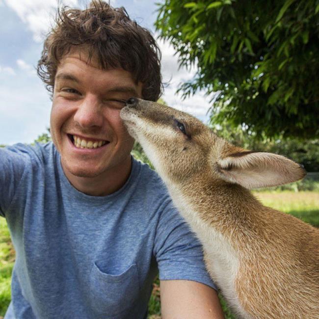 selfie_animais_08