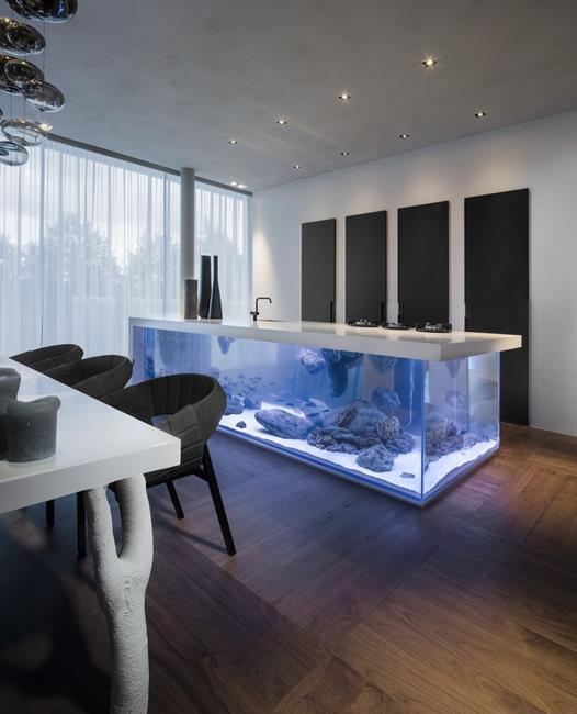aquario__07