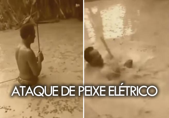 peixe_eletrico