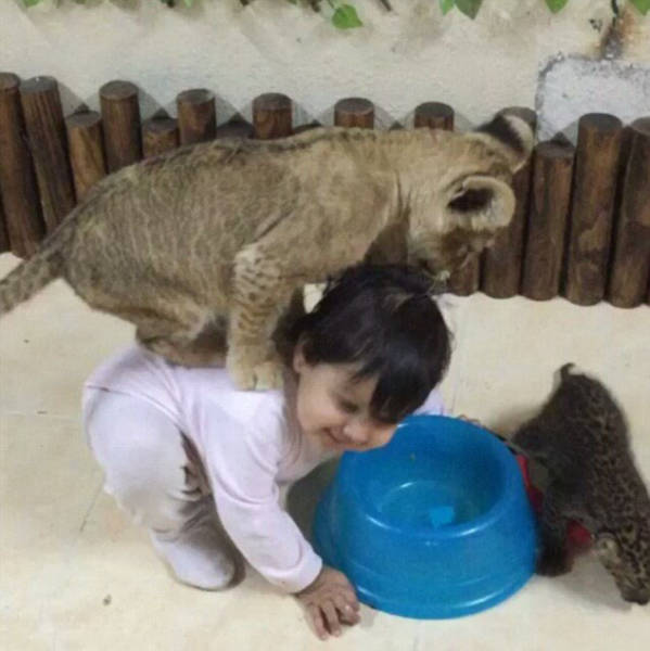 the_filthy_rich_like_to_flaunt_pictures_of_their_exotic_pets_online_640_10