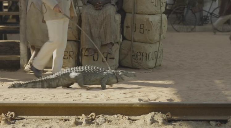 crocodilo1
