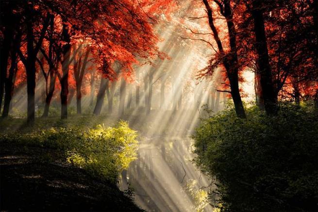 amazing_reflections_13