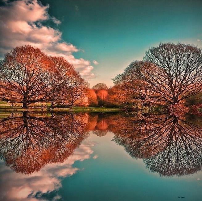 amazing_reflections_24